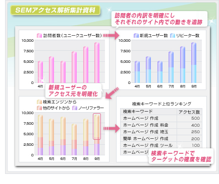 SEMアクセス解析集計資料│ホームページ作成(WEBサイト制作)東京・埼玉・神奈川 P2T